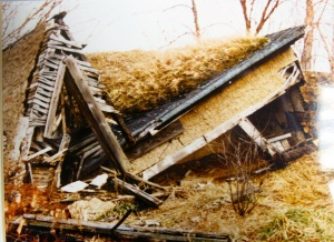 """This 1989 photo by Stan Apseloff shows the broken shed, well along in its entropic journey. Jennifer Mundy; Lost-Art critic for the Tate Modern; said; """"Some saw Smithson's artwork as expressive of a malaise within American political society, the envisaged cracking of the roof beam by the overwhelming force of gravity serving as a metaphor for the breaking of the political system."""""""