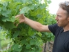 Despite setbacks, owner of The Winery at Wolf Creekoptimistic
